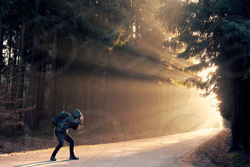 Young man is photographing sun rays on a path in the forest. photo