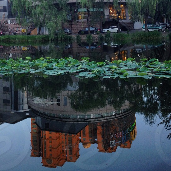 Reflection of buildings in the Canal running through the Liangma area of Beijing.  photo