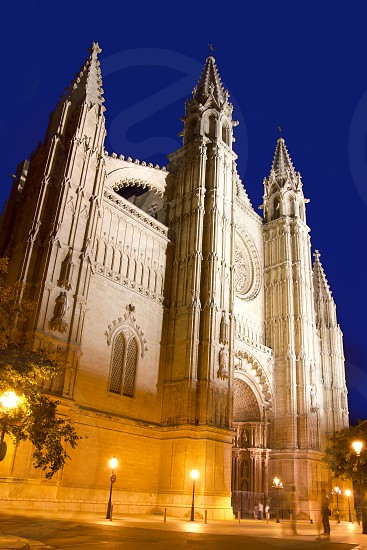 Cathedral of La Seu Majorca in Palma de Mallorca night view Balearic Islands photo