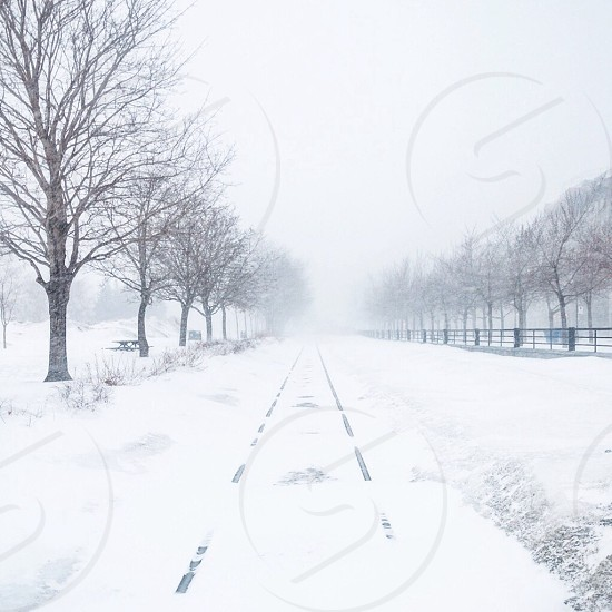 snowy road view photo