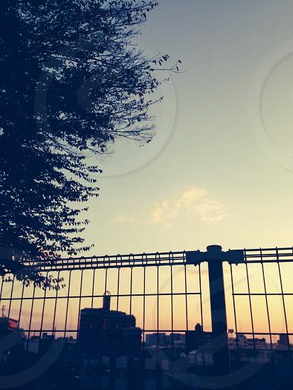 空 フェンス 風景 photo