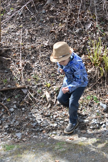 A young boy scans the hillside in search of a summer adventure photo