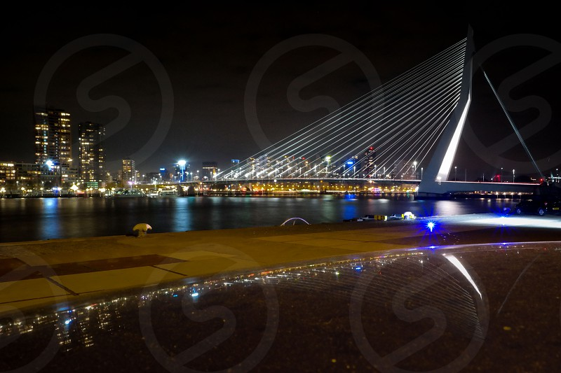 rotterdam by night photo