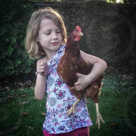 girl holding red feathered chicken photo