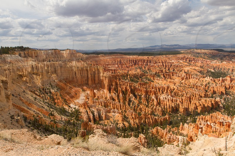 Looking over Bryce Canyon National Park Utah photo