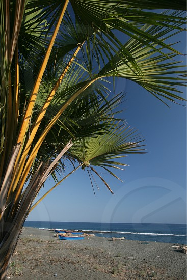 the coast and beach at the village of Betano in the south of East Timor in southeastasia.
