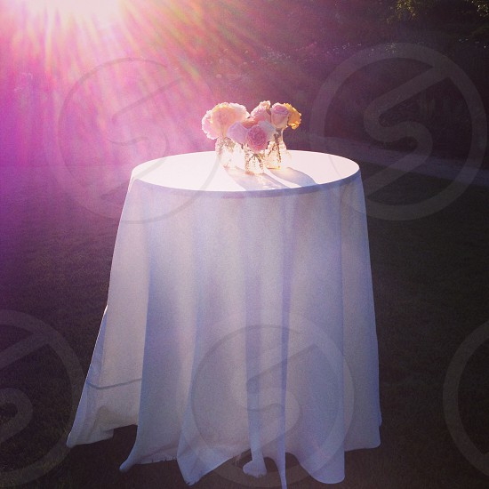 Table with flowers in sunlight photo