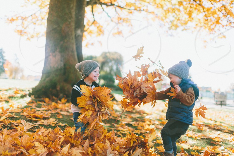 Two boys playing in the fall leaves.  photo