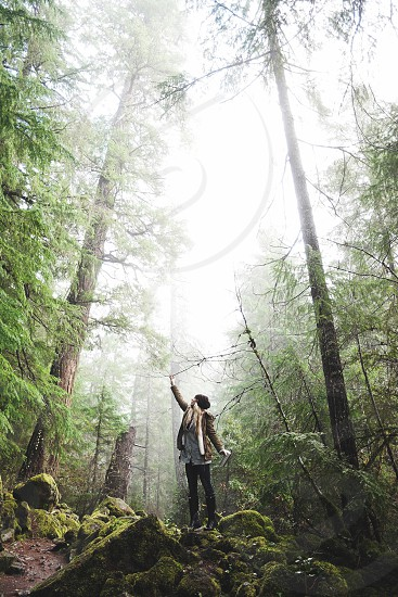 blonde woman wearing a black hat standing under foggy pine trees photo