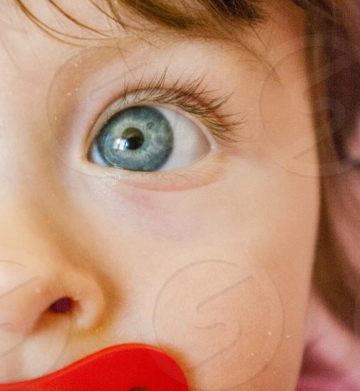 close up blue eye photo