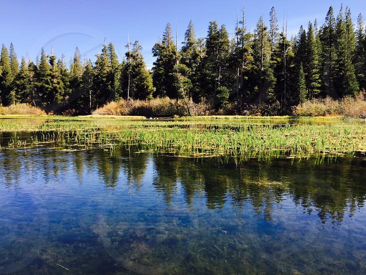 Lake view. Landscape. photo
