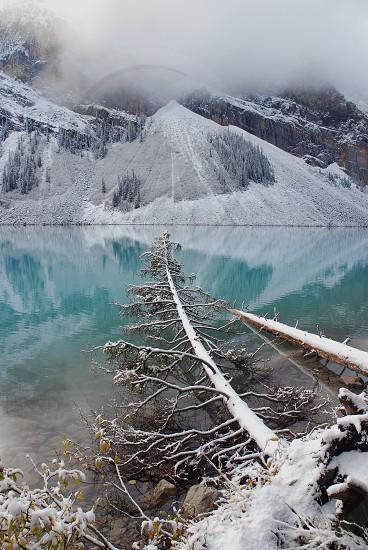 Winter lake Reflections photo