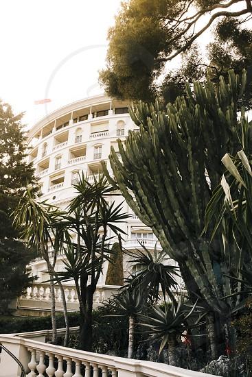 monte carlo building flats apartments apartment city sun flare plant photo