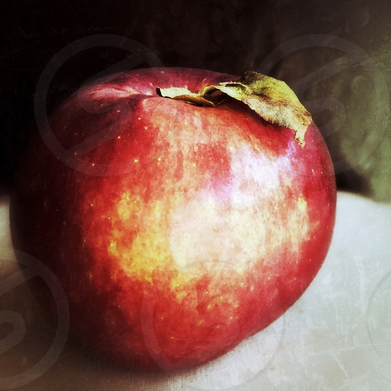 Apple fall food still life sweet leaf fresh picked photo