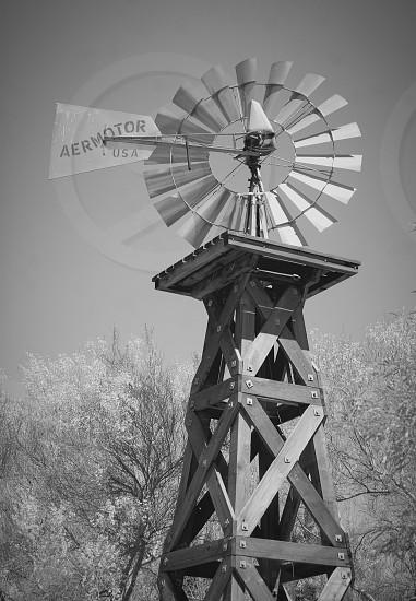 Windmill  photo