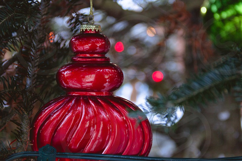 Tannenbaum Tree~ Adirondacks North Pole NY photo