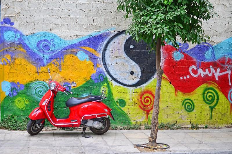 Vespa motorbike parked next to a small tree photo
