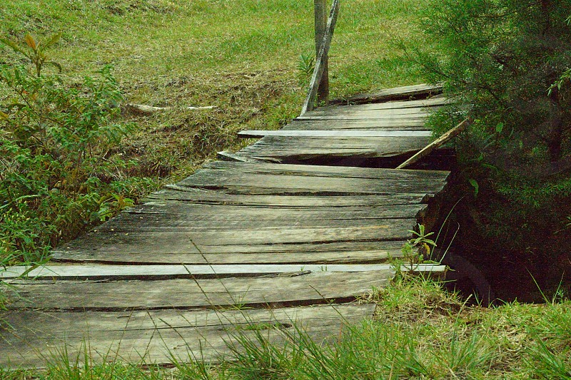 brown wooden damage bridge over water photo