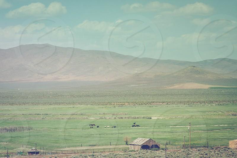 green grass mountain view photo