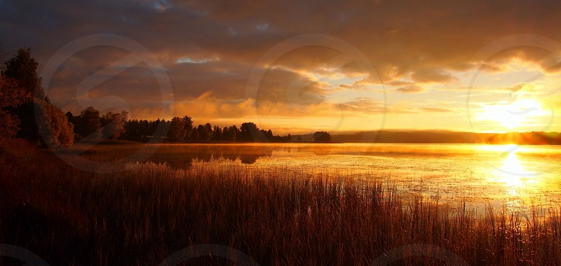 brown grass and water under the sunset photo