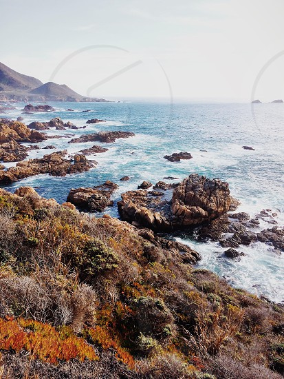Big Sur California.  photo