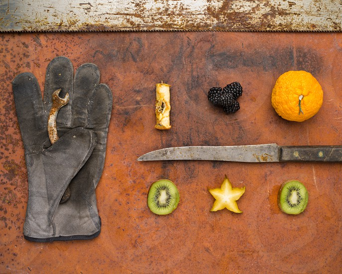Fruits of labor photo