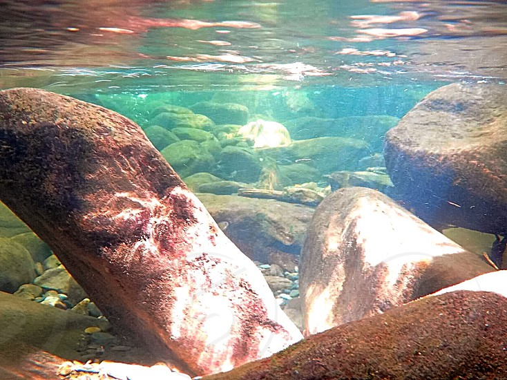 Photo of Smoky Mountains creek underwater photo