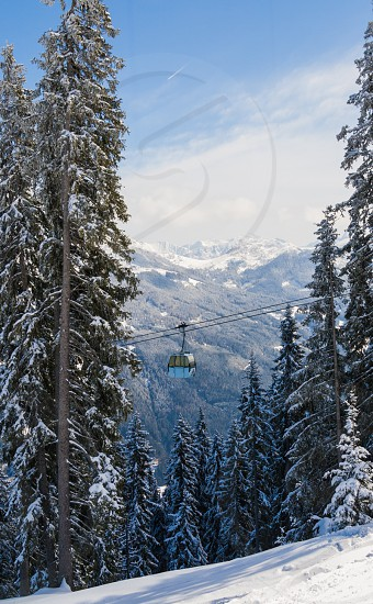 snow and trees in mountains photo