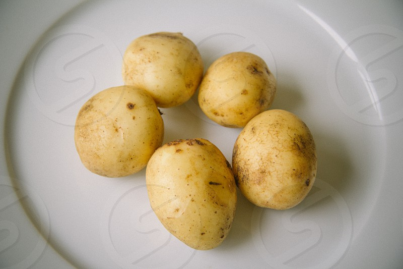 potatoes white plate five yellow round organic allotment countryside city farm organic healthy photo