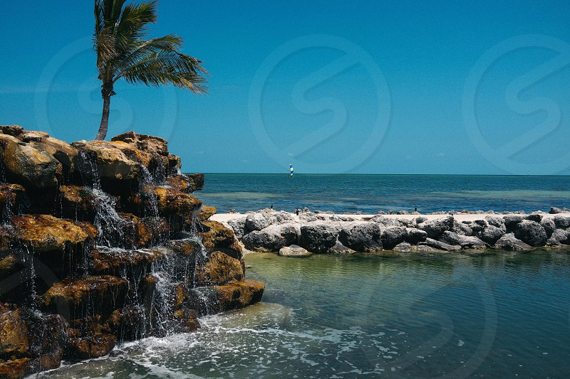 Tropical beach. Summer.  photo