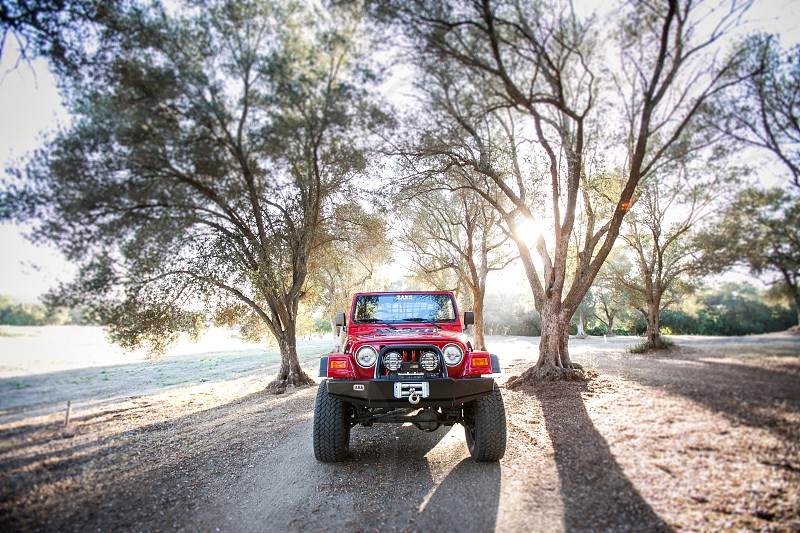 A jeep under a canopy of trees.  Leaves branches dirt mountain dirt off road red explore sun flare winch tires lights. photo