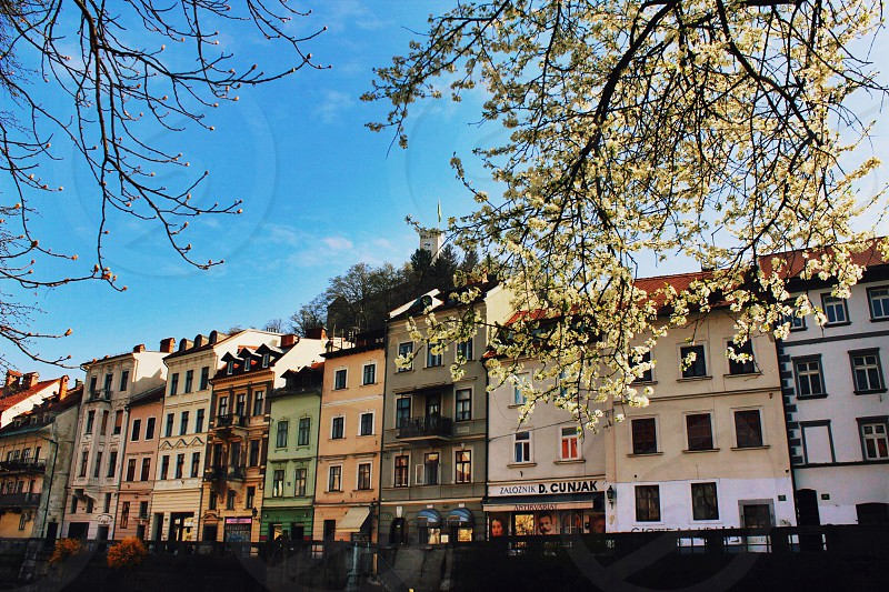 #ljubljana #slovenia #dashable photo