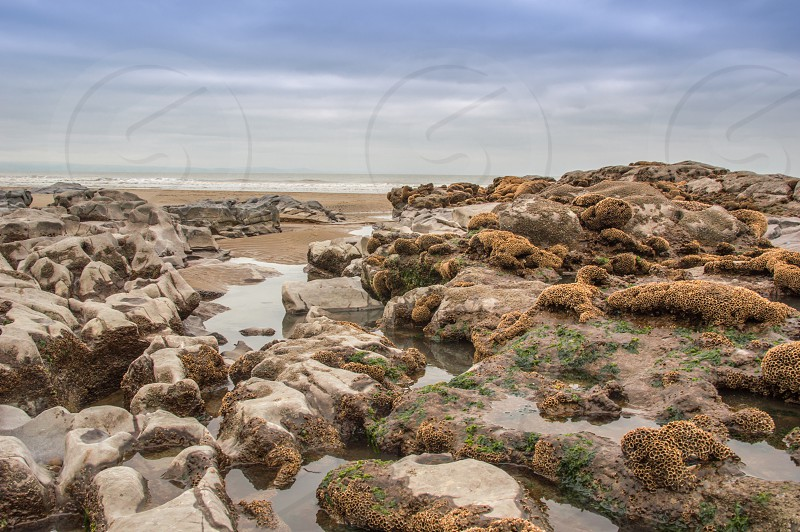 Rock Pools by the Sea photo