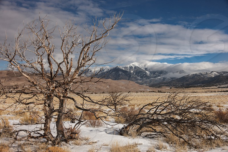 Clearing winter snow storm at Great Sand Dunes National Park and Preserve located near Alamosa in the San Luis Valley of Colorado. photo