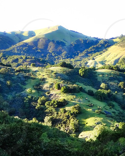 lush hillscape during daytime photo
