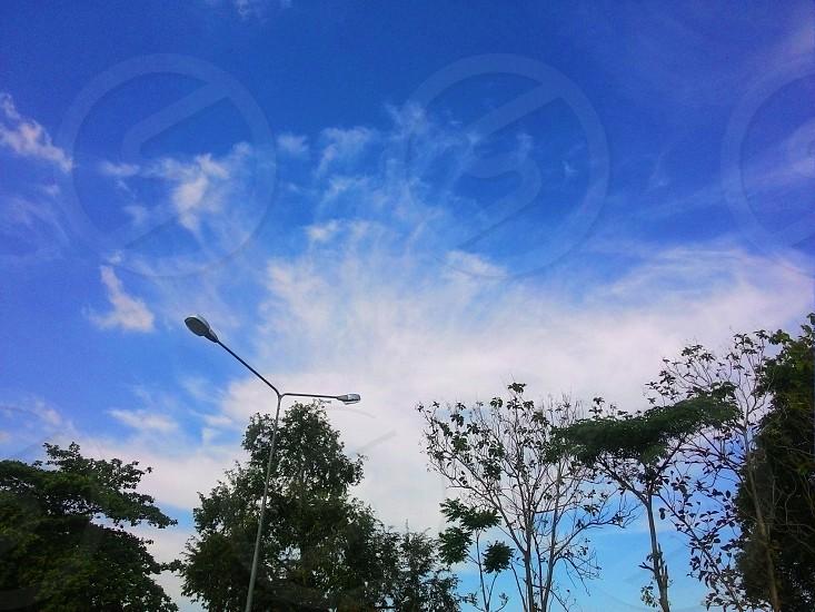 the vast sky photo