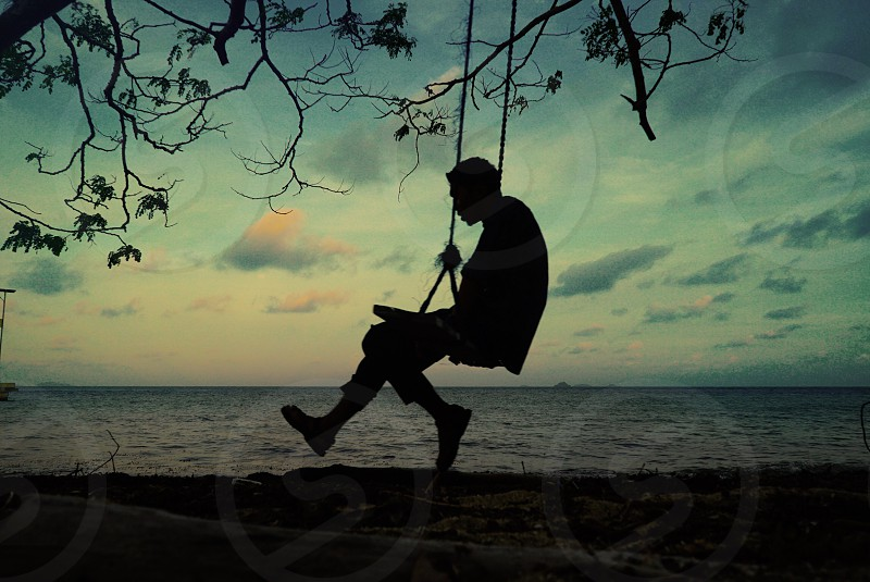 silhouette of a man on swing attached on tree near body of water photo