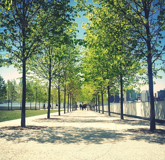 Let's stroll through the Four Freedoms Park. Roosevelt Island. NYC. photo