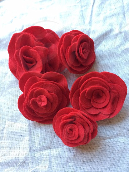 red flowers on white textile photo