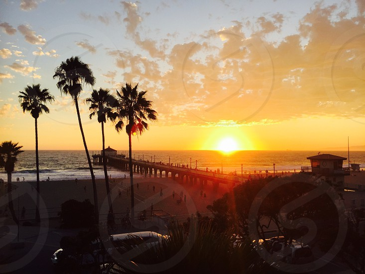 Los Angeles California Unites States USA sun sunset palm tree sand beach pier jetty coast sea ocean Pacific West clouds Sky view limo strolling photo
