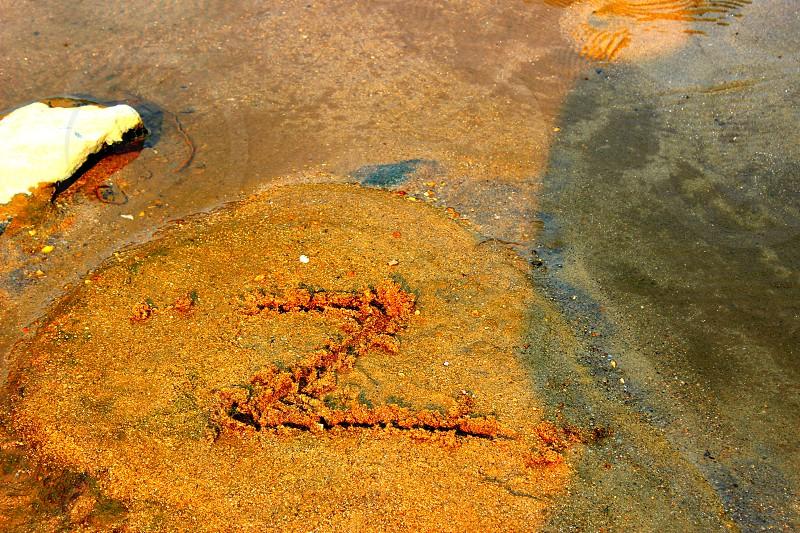 Z logo by creek photo