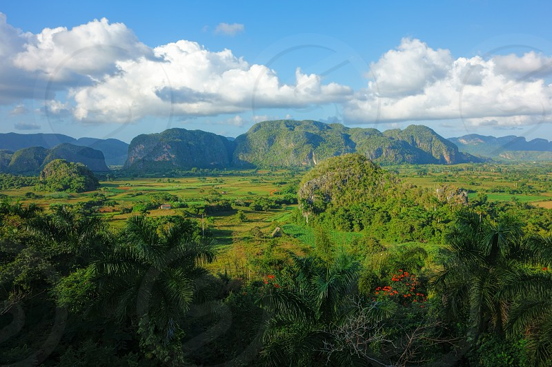 Lush green nature of the Valle de Vinales in Pinar del Río Province in Western Cuba in evening light on 20 December 2013.  photo