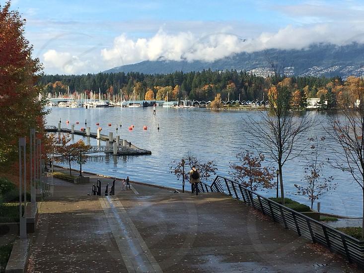 Coal Harbour marina Vancouver British Columbia photo