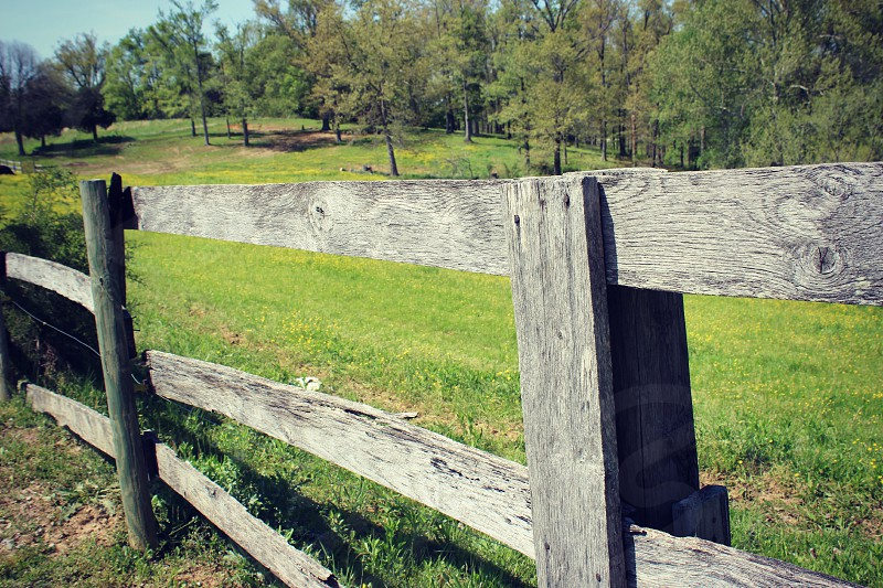 gray wooden fence on green grassy field photo