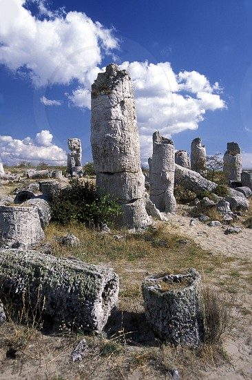 the stone forest near the city of Varna on the Blacksea in Bulgaria in east Europe. photo