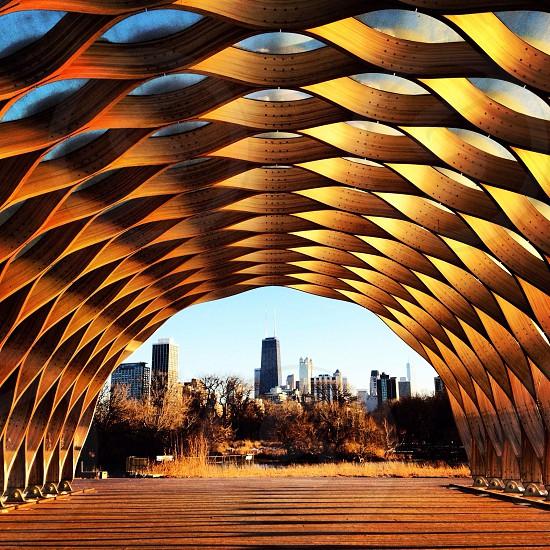 Nature Boardwalk - Lincoln Park Chicago photo