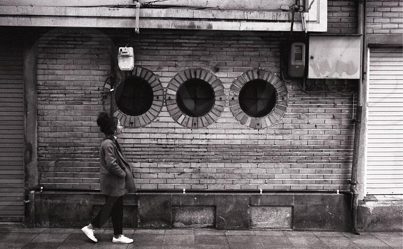 The bricks photo