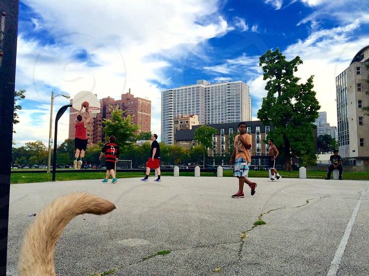 City hoops photo