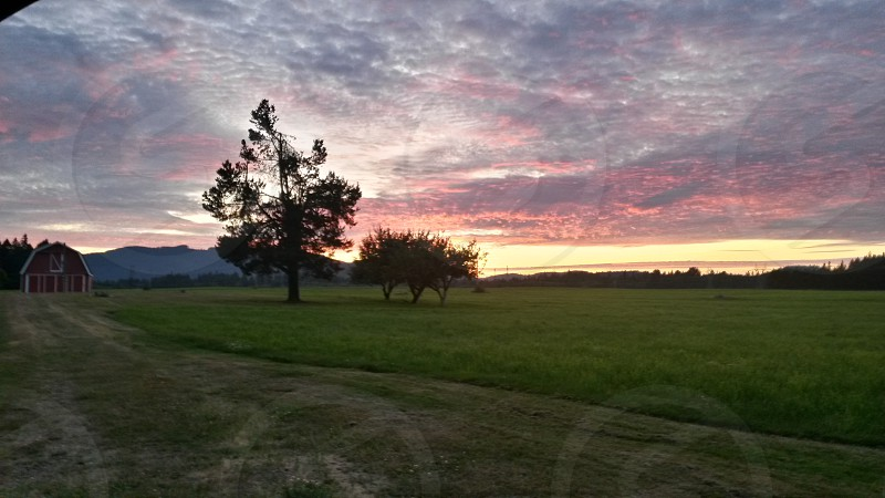 Mid summer sunset photo
