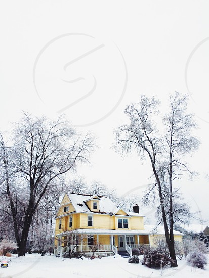 two storey house in between trees photo